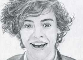 Harry Styles by Sylkee