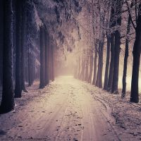 The Passage by MarcoHeisler