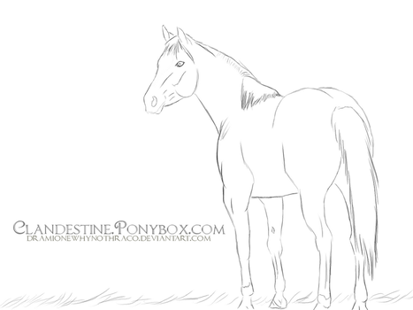 Quarter Horse Lineart by dramionewhynothraco