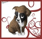 Look At Me, Boxer Puppy by ISHAWEE