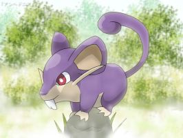 Rattata - Opportunity by roddz-art