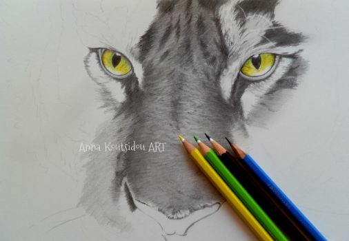 Tiger WIP by annakoutsidou