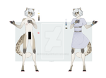 reference on anthro cat by fuqdem