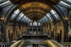 Natural History Museum HDR by kakobrutus