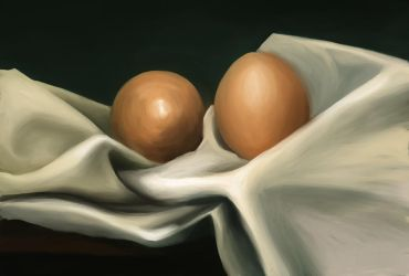 Two eggs and a pillow case by Ciardubh