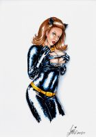 CatWoman in the 60s by HM1art
