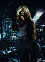 Catwoman  Photomanipulation by daniacdesign
