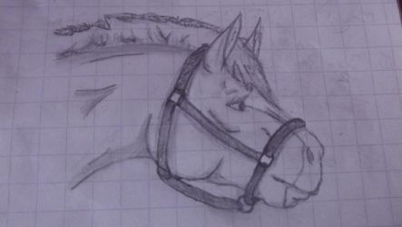 Qu  {Traditional } Pencil by NorthernMyth