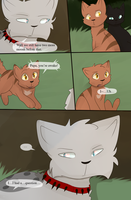 Bloodclan: The Next Chapter Page 330 by StudioFelidae