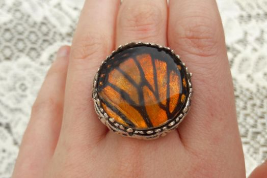 Monarch Wing Rings by KristenJarvisART