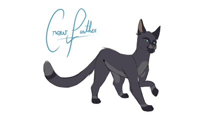 CrowFeather by Kitty-Winder