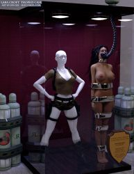 Lara Croft (classic) Trophy Case by thejpeger