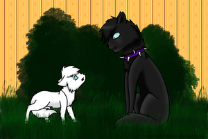 .:The Warning:. by YellowfangOfStarclan