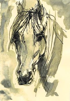 Horse ink 1 by Vulturek