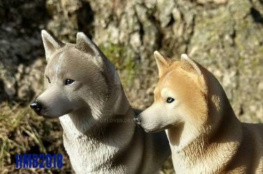 Siberian Huskys by OTlover
