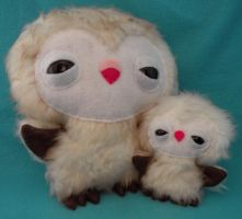 Mom and baby Barn Owls by loveandasandwich
