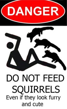 Do Not Feed Squirrels by hosmer23