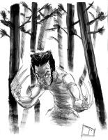 Wolverine by meritcomics