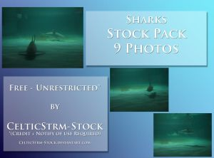 Shark Freebie by CelticStrm-Stock by CelticStrm-Stock