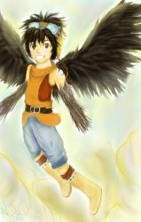 Cooro in the Sky by Checker-Bee