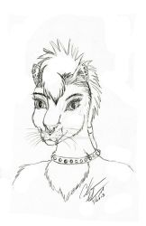 Punk Cat by sabbathsilverclaw