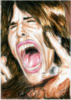 Steven Tyler Color by Sass-Haunted