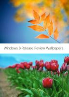 Windows 8 Release Preview Wallpapers by Misaki2009