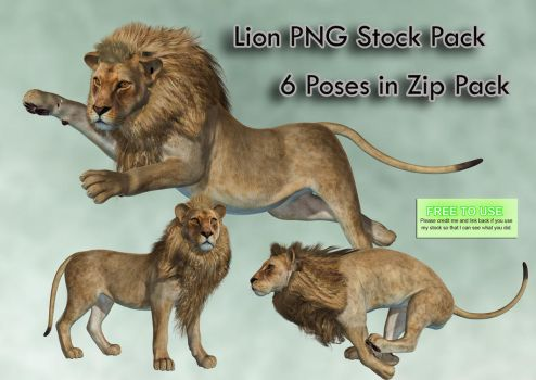 Lion PNG Stock Pack by Roy3D