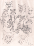Drawings of foxes. by Nayikee