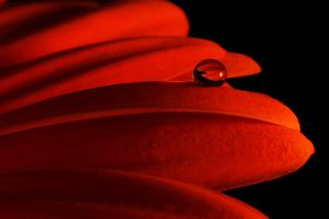 Macro water droplet II by mstargazer