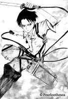 Animated No regrets- Levi Ackerman (AOT) by Pearlonthesea