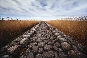 Road To Ruin by AndrisBarbans