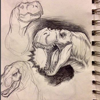 Trex - Sketches by SketchMonster1