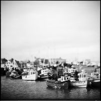 harbor by Valdoo