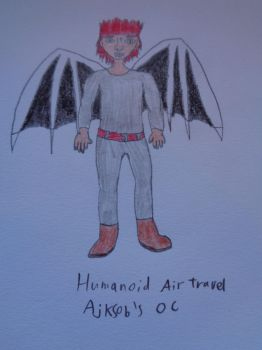 Art trade: Air Travel as a humanoid by woodywoodwood
