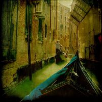 venice by incolorwetrust