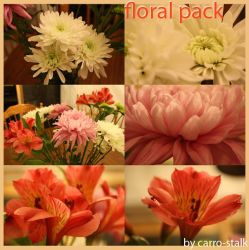 floral pack 005 by carro-stalk