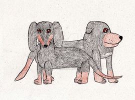 The two Dachshund (Traditional drawing) by tillamillasilla