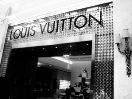 Louis Vuitton by accidentalbeauty