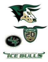 USF ICE BULLS LOGO SUBMISSION by BURZUM