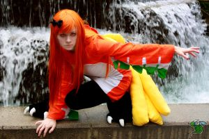 PKMN: A Wild Ho-Oh Appears by paprikapatches