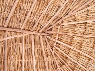 Thatch Roof Celestun by kingfrog