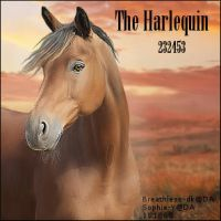The Harlequin by midholly