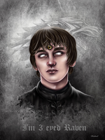 Brandon Stark by PHVNTOMVS