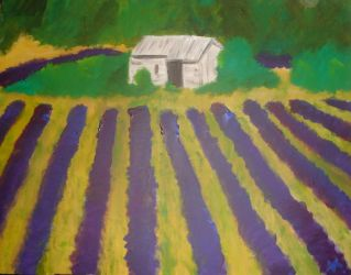 Provence by Mutany