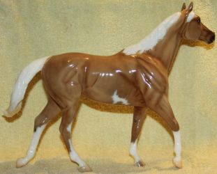 Breyer - Carrick - Stock 2 by Lovely-DreamCatcher