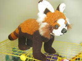 GIANT Red Panda by vombatiformes