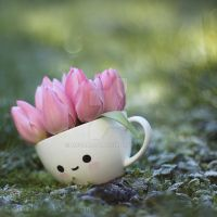 Cup with spring by meganjoy
