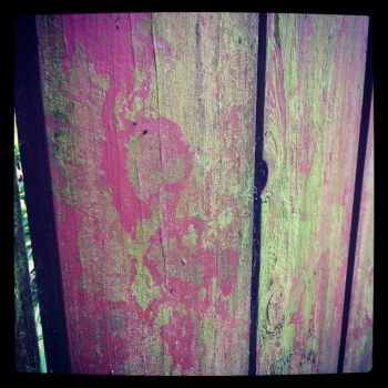 Red wood fence with mold by necrosensual-art
