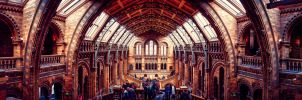 Natural History Museum London 2 by calimer00